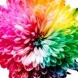 La teoria dei colori di Itten