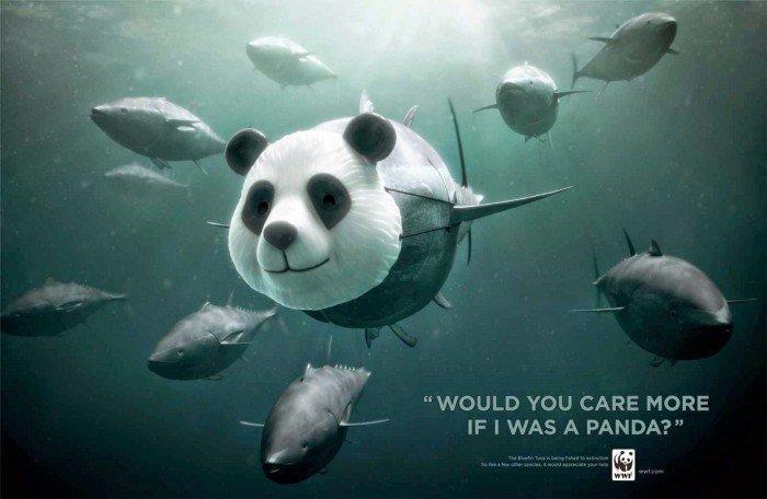 Cartelloni del WWF