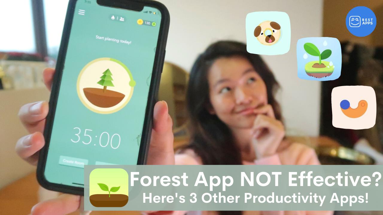app per organizzare il lavoro forest