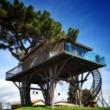 Casa sull'albero: design e natura