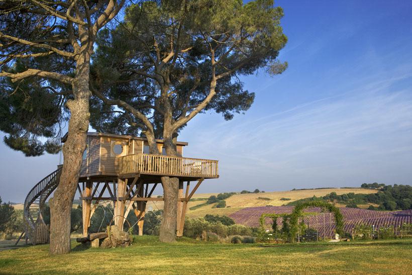 casa sull'albero design